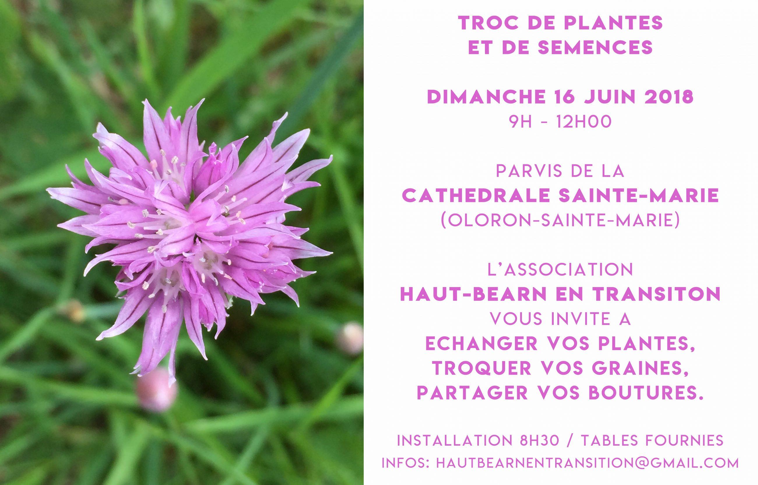 Graines Et Plantes Calendrier Lunaire Mars 2020.16 Juin 9 12h Troc De Plantes A Oloron Salies De Bearn